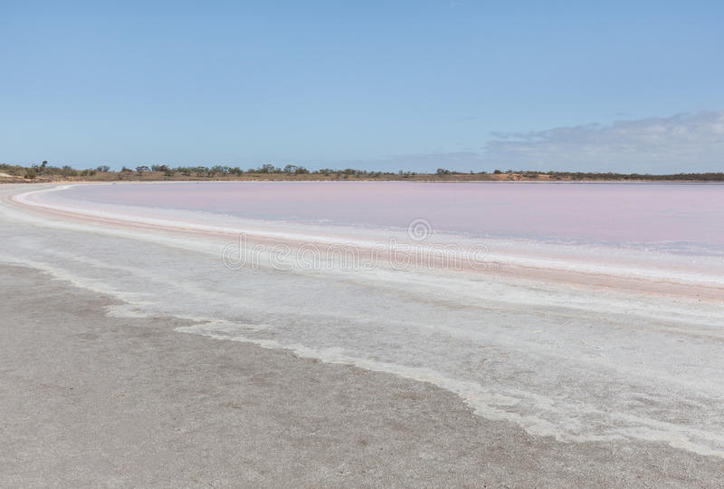 Paesaggio rosa di Salt Lake Becking fotografie stock libere da diritti