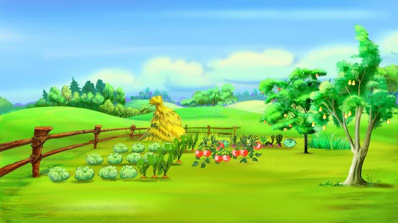 Paesaggio rurale con l'orto in un giorno di estate illustrazione vettoriale