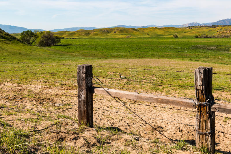 Paesaggio rurale con la recinzione ed il rotolamento delle colline verdi immagini stock libere da diritti