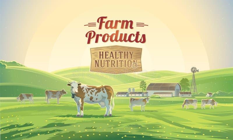 Paesaggio rurale con le mucche e l'azienda agricola