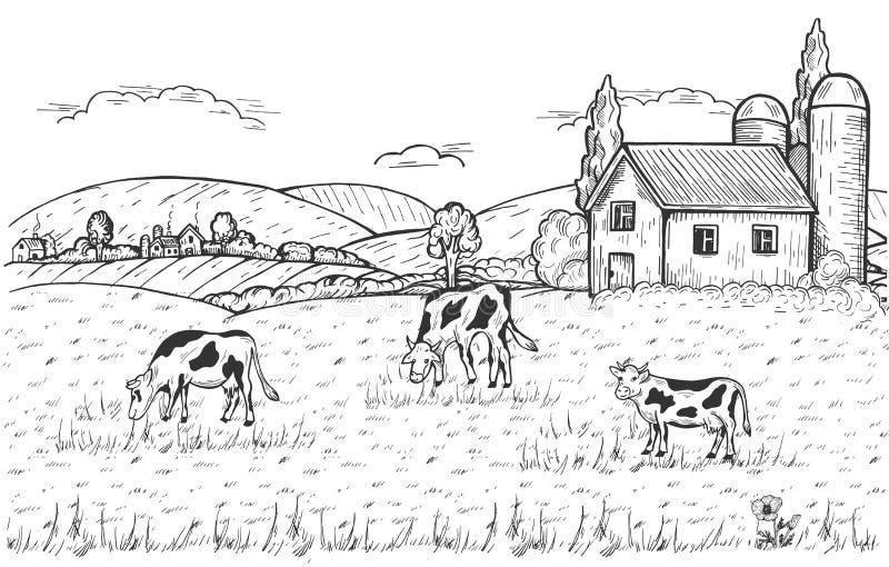 Paesaggio rurale con le mucche, l'azienda agricola ed il villaggio sotto le colline illustrazione di stock