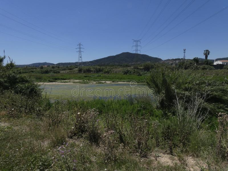 Paesaggio rurale con le torri elettriche che attraversano il prato fotografia stock