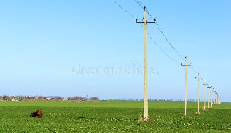 Paesaggio rurale con un campo verde e una linea elettrica fotografia stock