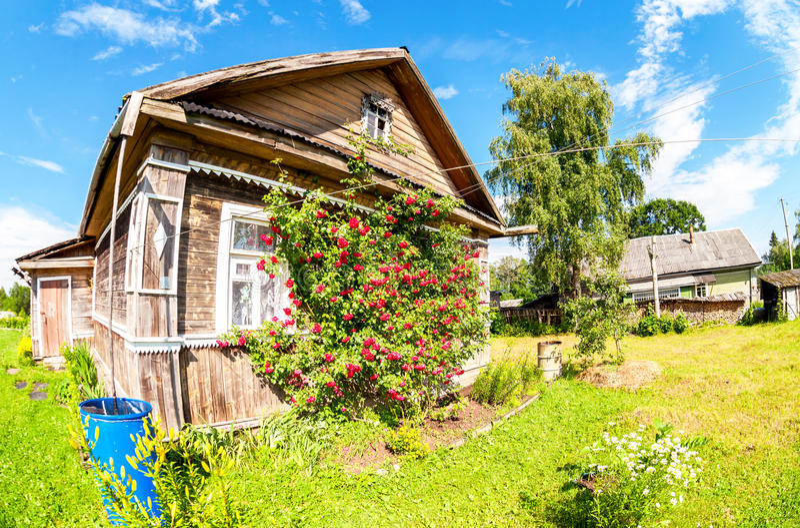 Paesaggio rurale con un genere su una vecchia casa di legno e fiori immagine stock libera da diritti