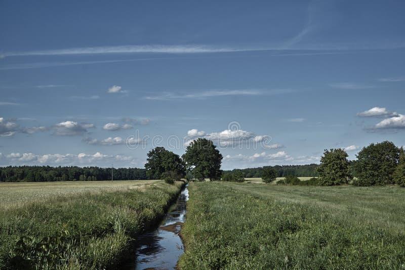 Paesaggio rurale con un piccolo fiume fotografia stock libera da diritti