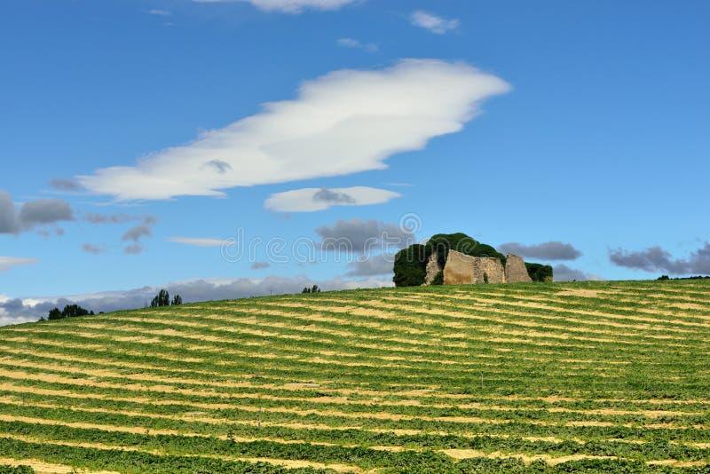 Paesaggio rurale della Provenza immagine stock