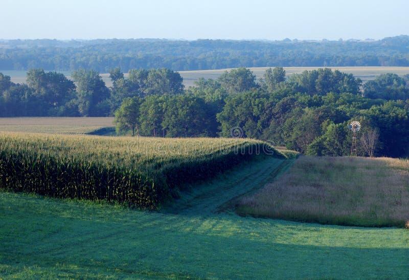 Paesaggio rurale dello Iowa immagine stock libera da diritti