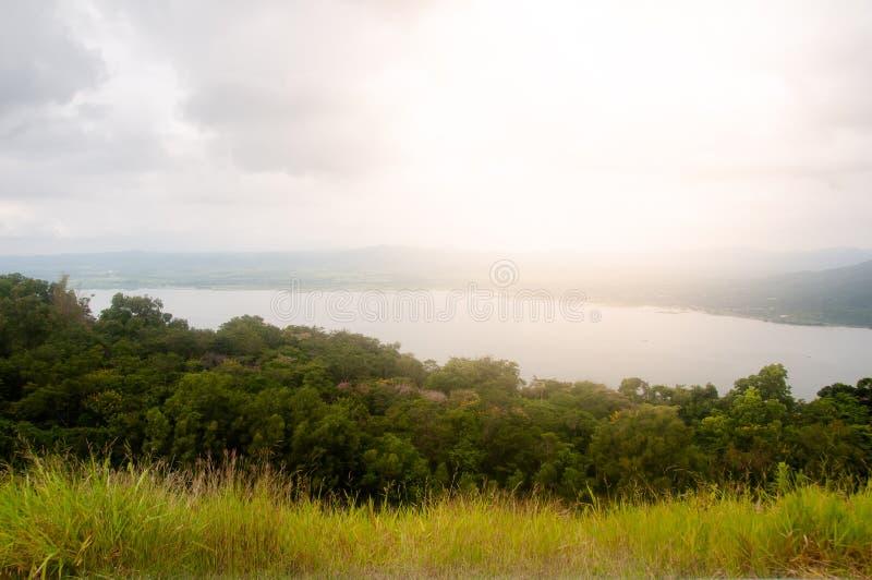 Paesaggio rurale di arte con l'albero, l'erba ed il cielo in Tailandia, paesaggio con il lato del paese fotografia stock libera da diritti