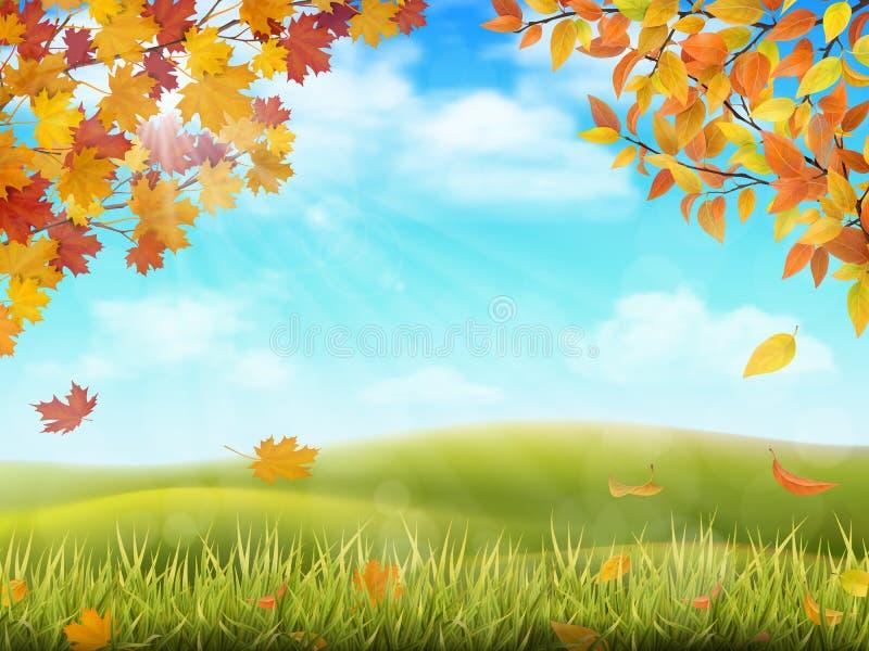 Paesaggio rurale di autunno con i rami di albero illustrazione vettoriale