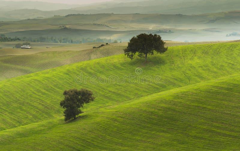 Paesaggio rurale di tramonto della Toscana fotografie stock libere da diritti
