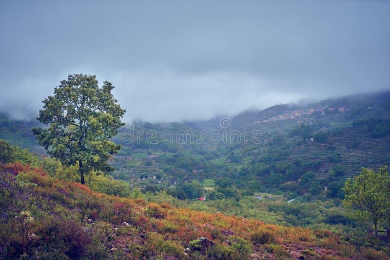 Paesaggio rurale dopo un giorno di molla piovoso immagine stock