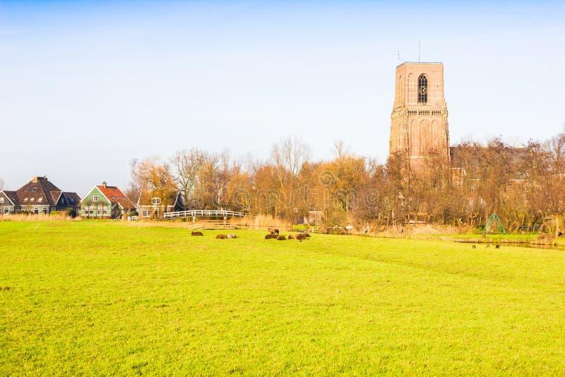 Paesaggio rurale in Ransdorp, Paesi Bassi fotografia stock libera da diritti