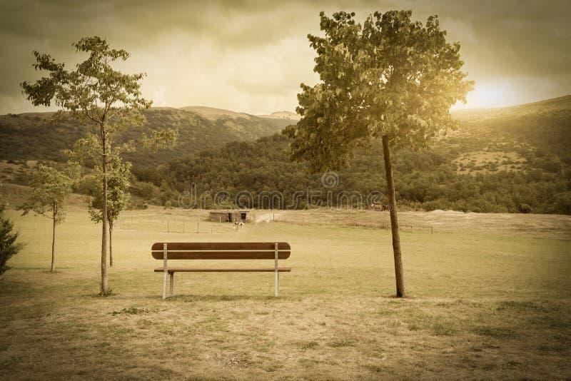Paesaggio rurale tipico Italia fotografie stock libere da diritti