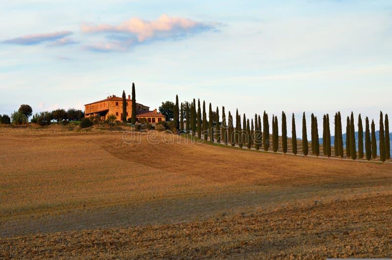 Paesaggio rurale toscano fotografia stock libera da diritti