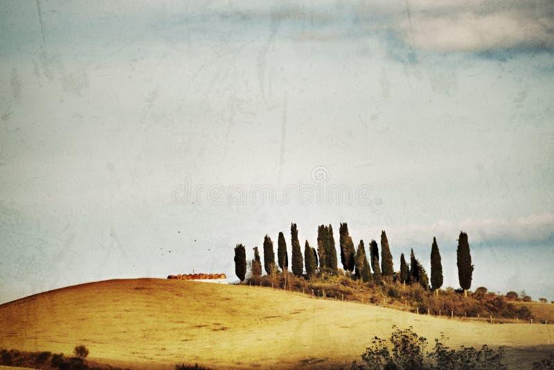 Paesaggio rurale toscano immagine stock