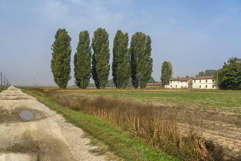 Paesaggio rurale vicino a Belgiioso, Pavia, Italia fotografia stock