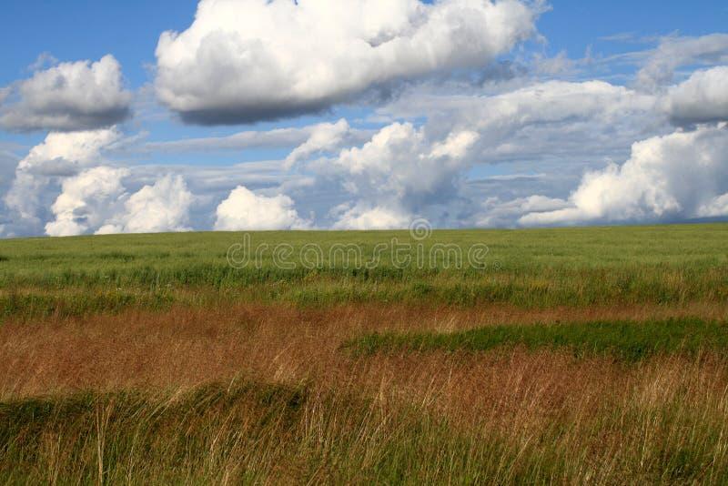 Paesaggio russo fotografie stock