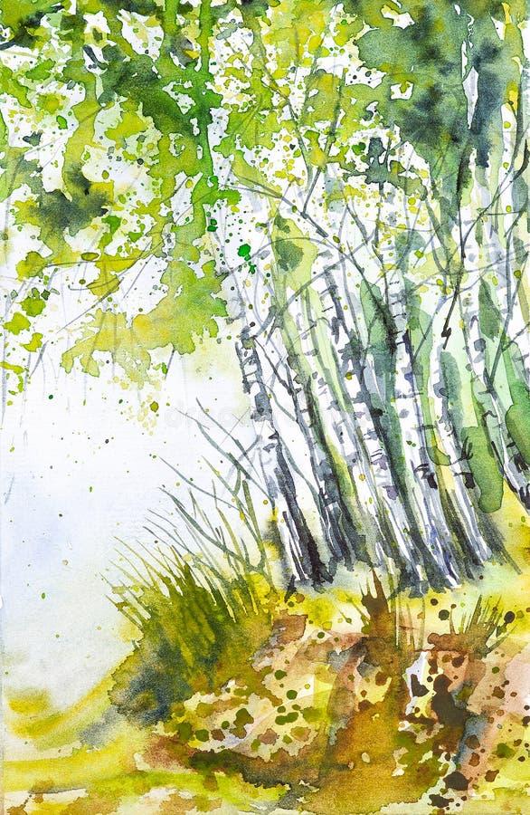 Paesaggio russo della foresta con le belle betulle in uno schiarimento illustrazione di stock
