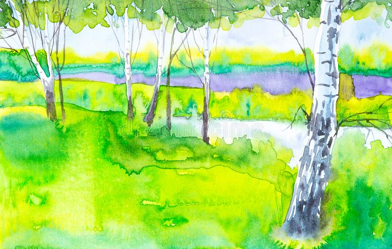 Paesaggio russo della foresta con le belle betulle in uno schiarimento Illustrazione dell'acquerello illustrazione vettoriale
