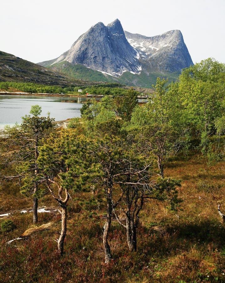 Download Paesaggio scandinavo fotografia stock. Immagine di acqua - 7314076