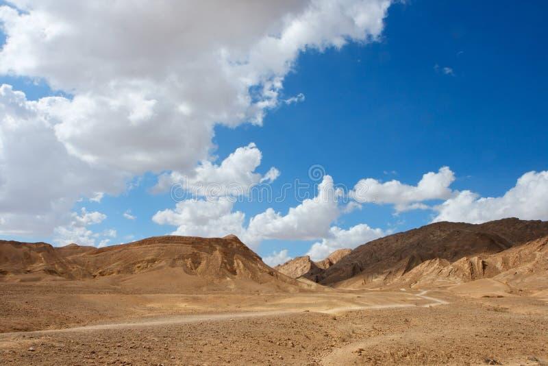 Paesaggio scenico del deserto immagine stock libera da diritti