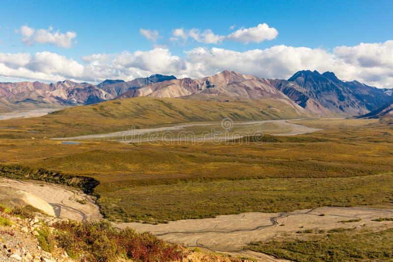 Paesaggio scenico del parco nazionale di Denali fotografia stock