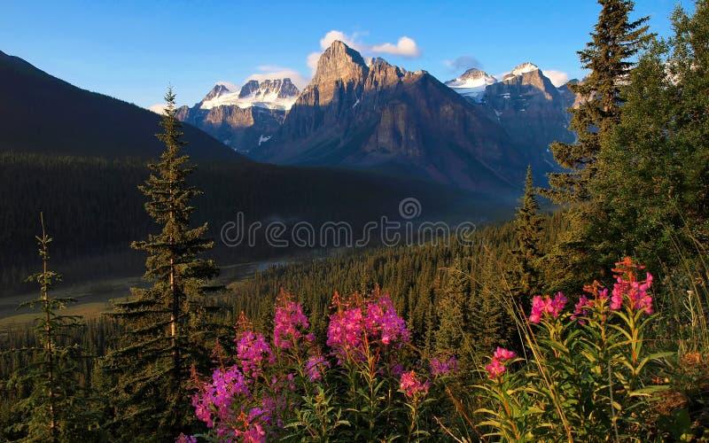 Paesaggio scenico della natura nel Canada fotografia stock