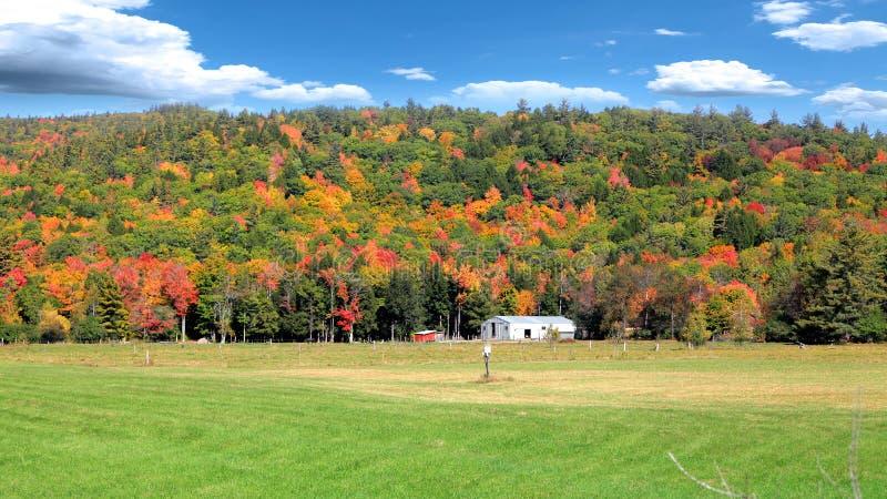 Paesaggio scenico di autunno nel Vermont rurale immagine stock libera da diritti