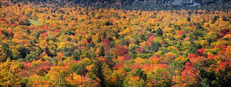 Paesaggio scenico di autunno in Nuova Inghilterra fotografia stock libera da diritti