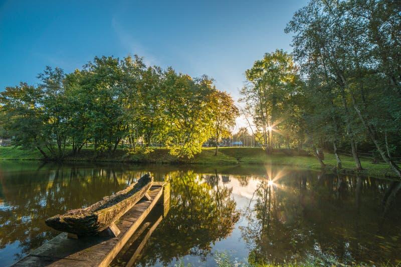 Paesaggio scenico di caduta della foresta ad alba fotografia stock libera da diritti