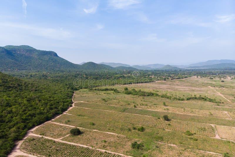 Paesaggio scenico di vista aerea del colpo del fuco dell'azienda agricola di agricoltura contro la foresta della natura e della m immagine stock libera da diritti