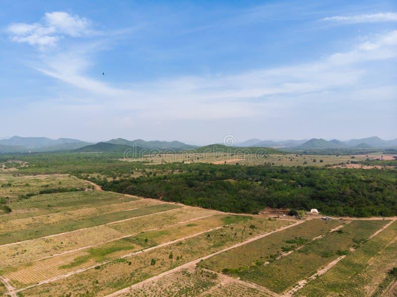 Paesaggio scenico di vista aerea del colpo del fuco dell'azienda agricola di agricoltura contro la foresta della natura e della m fotografie stock