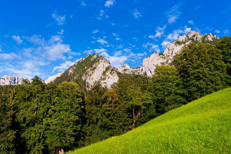 Paesaggio scenico nello sbarco di Berchtesgadener, Baviera immagini stock