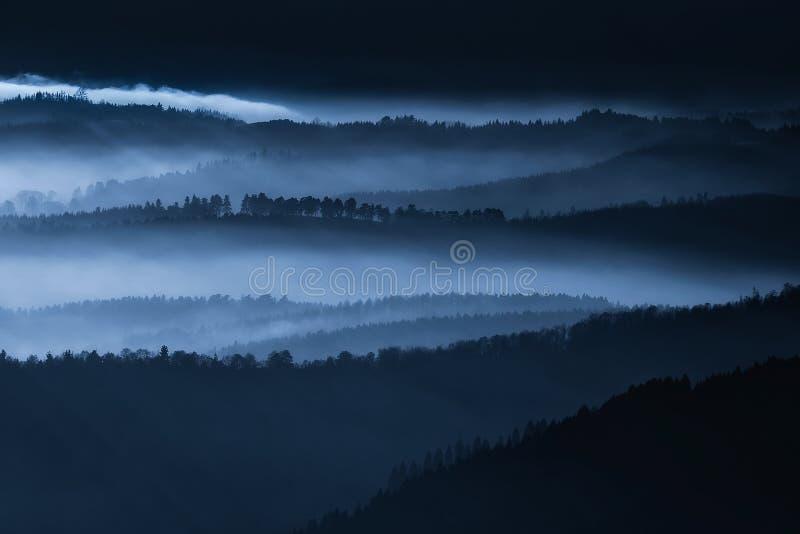 Paesaggio scuro con gli alberi nebbiosi fotografie stock libere da diritti
