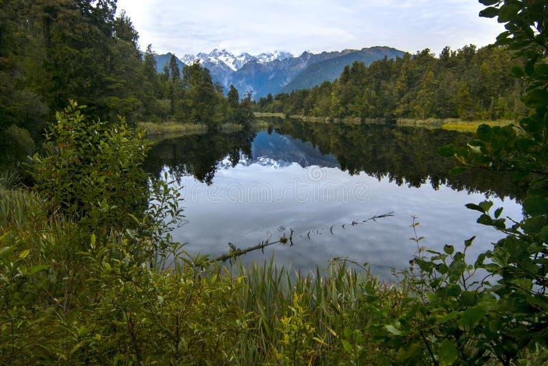 Paesaggio selvaggio della natura con diversa vegetazione ed il lago pacifico di chiara acqua incontaminata con la riflessione di  fotografia stock