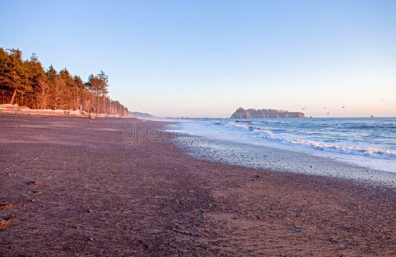 Paesaggio splendido della spiaggia al tramonto Spiaggia di spinta della La, WA fotografia stock libera da diritti