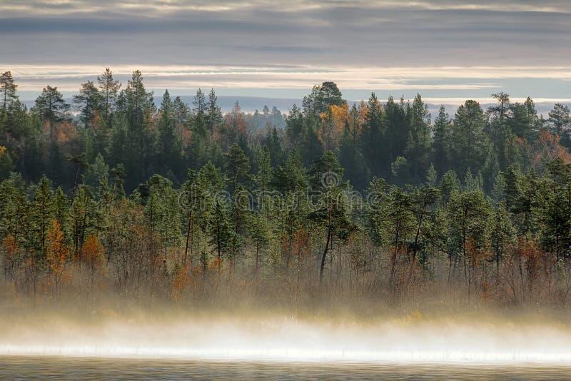 Paesaggio splendido di autunno con il fiume immagine stock