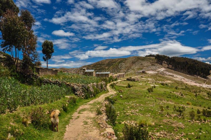Paesaggio splendido di Isla del Sol, Bolivia fotografia stock libera da diritti