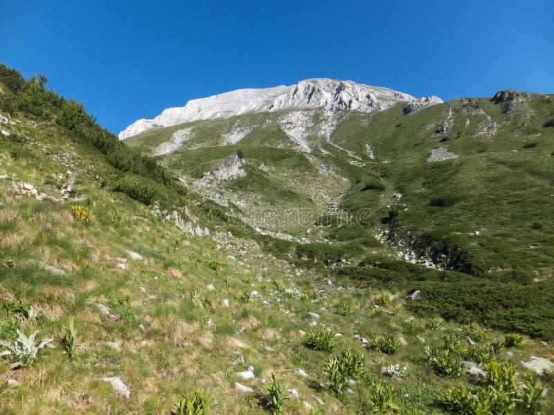 Download Paesaggio Stupefacente Con Il Picco Di Vihren, Montagna Di Pirin Immagine Stock - Immagine di stupore, nave: 117981451