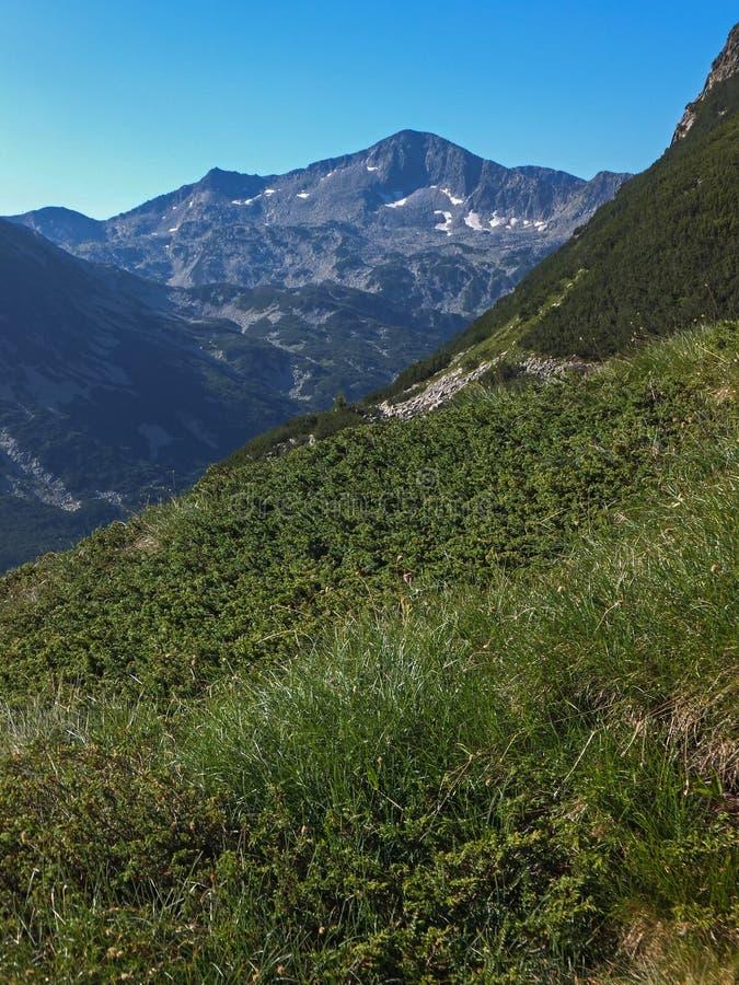 Download Paesaggio Stupefacente Dall'itinerario A Scalare Un Picco Di Vihren, Montagna Di Pirin Immagine Stock - Immagine di eredità, riserve: 117981601