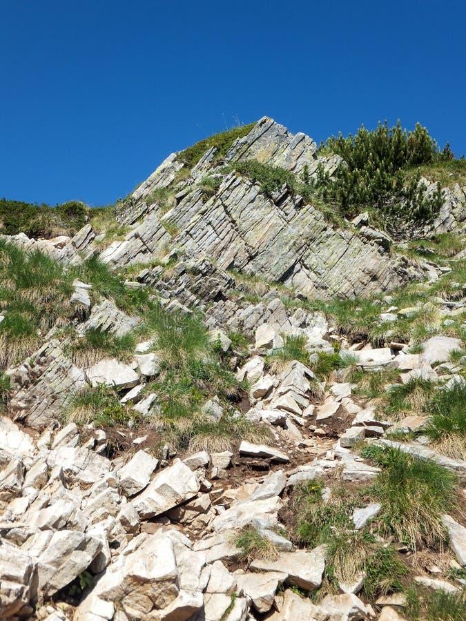 Download Paesaggio Stupefacente Dall'itinerario A Scalare Un Picco Di Vihren, Montagna Di Pirin Immagine Stock - Immagine di riserva, pulito: 117981729