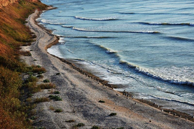 Paesaggio stupefacente della natura di autunno alla spiaggia di Tuzla, Romania fotografia stock libera da diritti