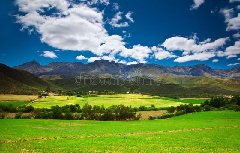 Paesaggio sudafricano immagini stock