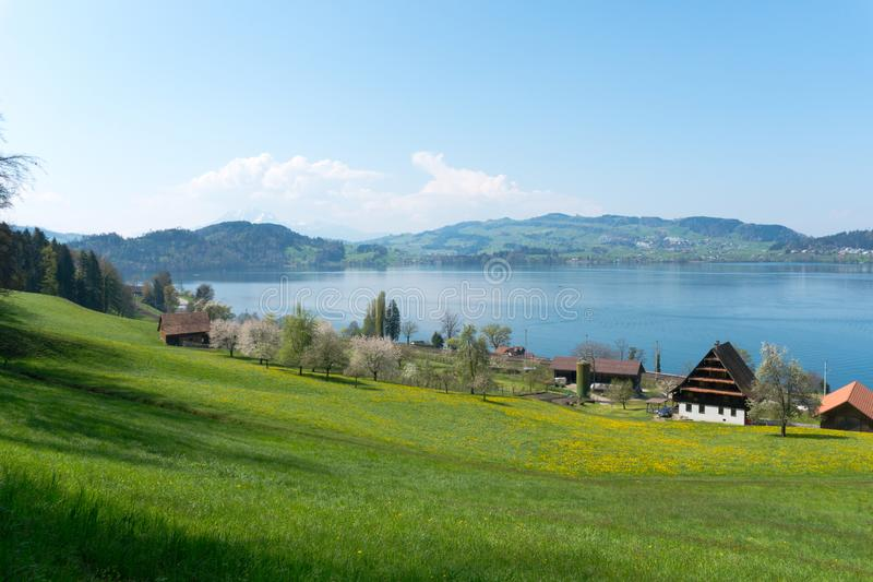 Paesaggio svizzero idilliaco della montagna del paese con il lago delle aziende agricole e montagne nella distanza immagini stock libere da diritti
