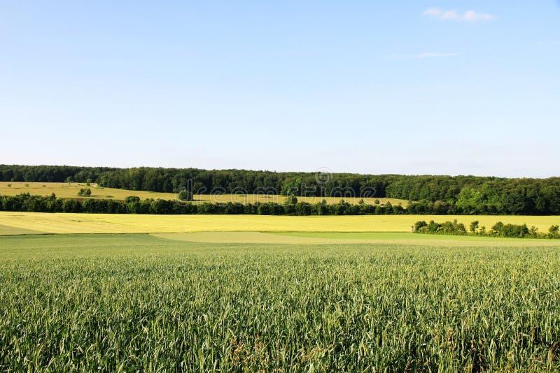Paesaggio tedesco fotografia stock libera da diritti