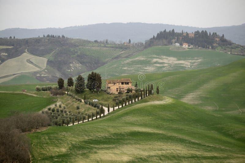 Paesaggio tipico della Toscana, Italia immagini stock libere da diritti