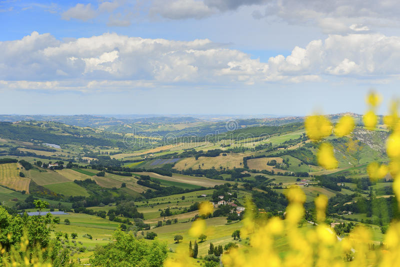 Paesaggio tipico in Marche immagini stock