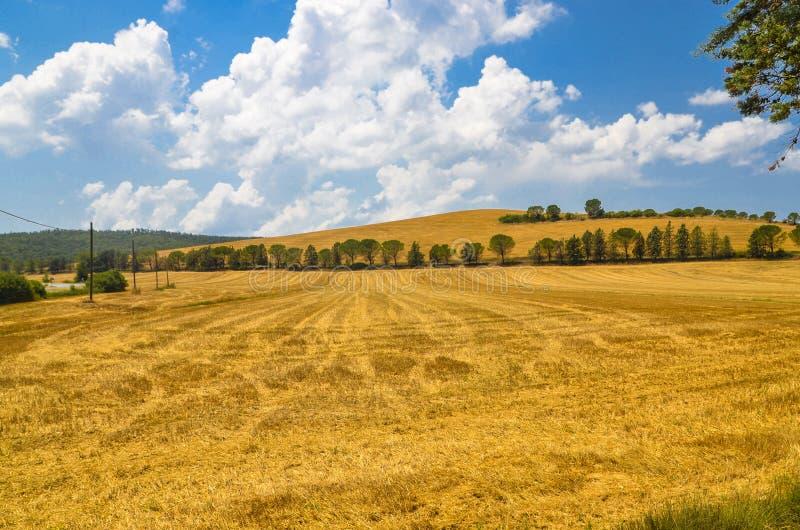 Paesaggio, Toscana Val D'Orcia fotografie stock libere da diritti