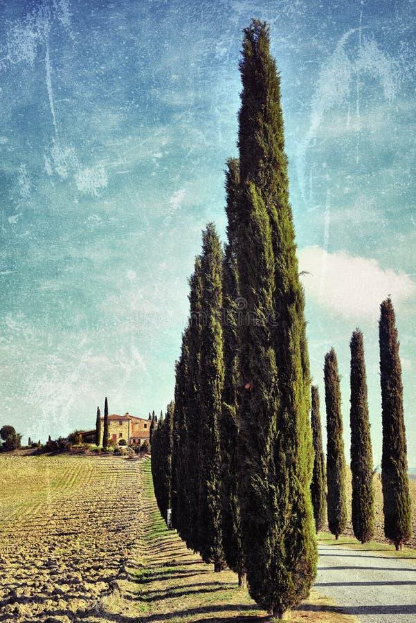 Paesaggio toscano. Filtrato fotografia stock libera da diritti