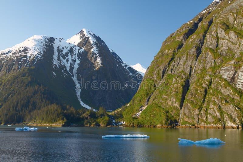 Paesaggio a Tracy Arm Fjords nell'Alaska Stati Uniti fotografie stock libere da diritti